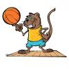 Locandina basket A3