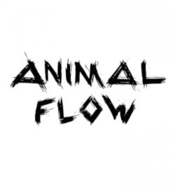 Animal Flow®️